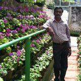 Rajarathanam from Udagamandalam | Man | 34 years old | Capricorn